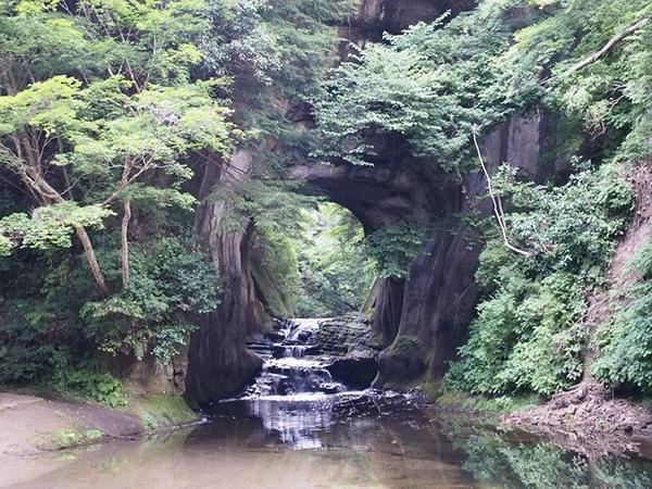 トトロの森は日本各地に!?埼玉、千葉、大分、山形