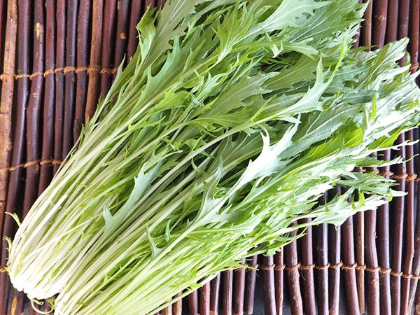 京菜(水菜)