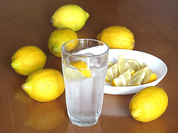 レモンの剪定と摘果について