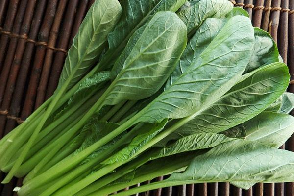 小松菜の効果効能とおいしい食べ方